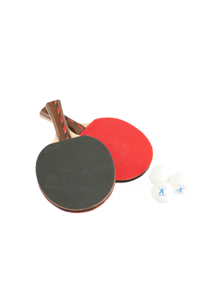 Table tennis set with handy storage bag